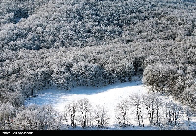 http://newsmedia.tasnimnews.com/Tasnim//Uploaded/Image/1393/11/28/139311281232415404766474.jpg