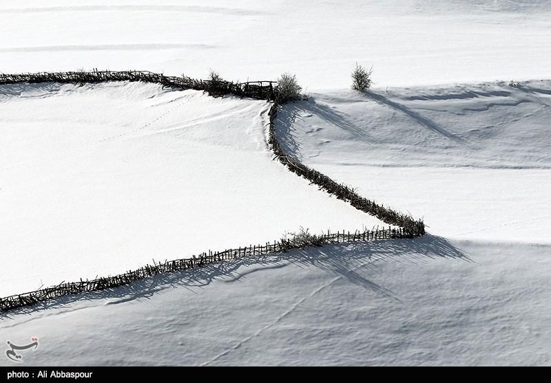 http://newsmedia.tasnimnews.com/Tasnim//Uploaded/Image/1393/11/28/139311281238418854766684.jpg