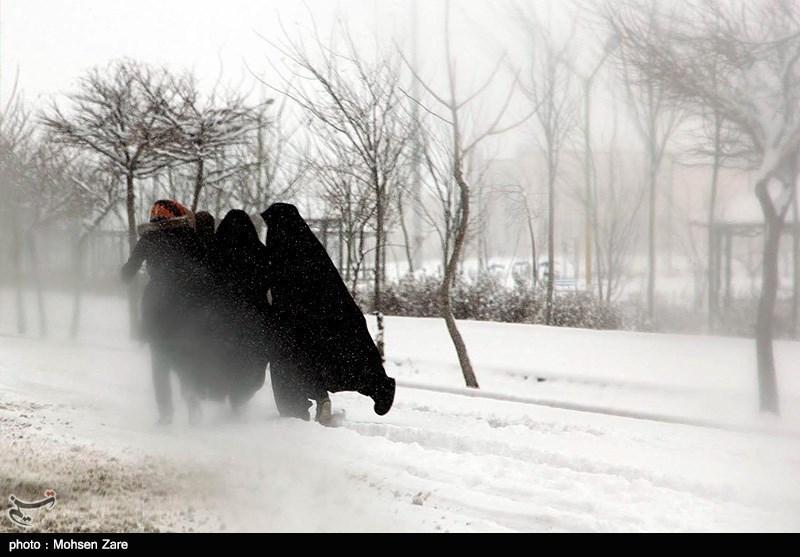 http://newsmedia.tasnimnews.com/Tasnim//Uploaded/Image/1393/12/03/139312031452542504800164.jpg