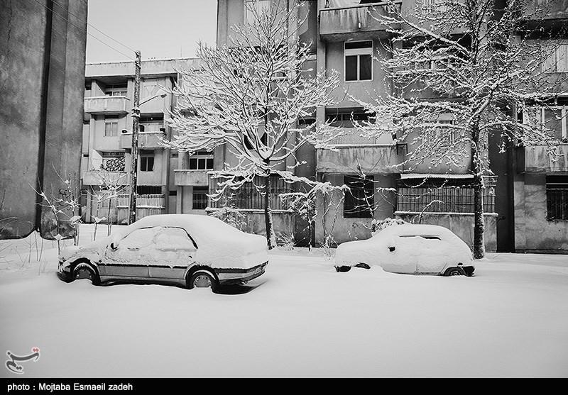 http://newsmedia.tasnimnews.com/Tasnim//Uploaded/Image/1393/12/05/139312051506226934812584.jpg