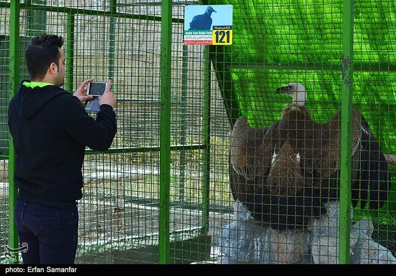http://newsmedia.tasnimnews.com/Tasnim//Uploaded/Image/1393/12/27/139312271137234504945544.jpg