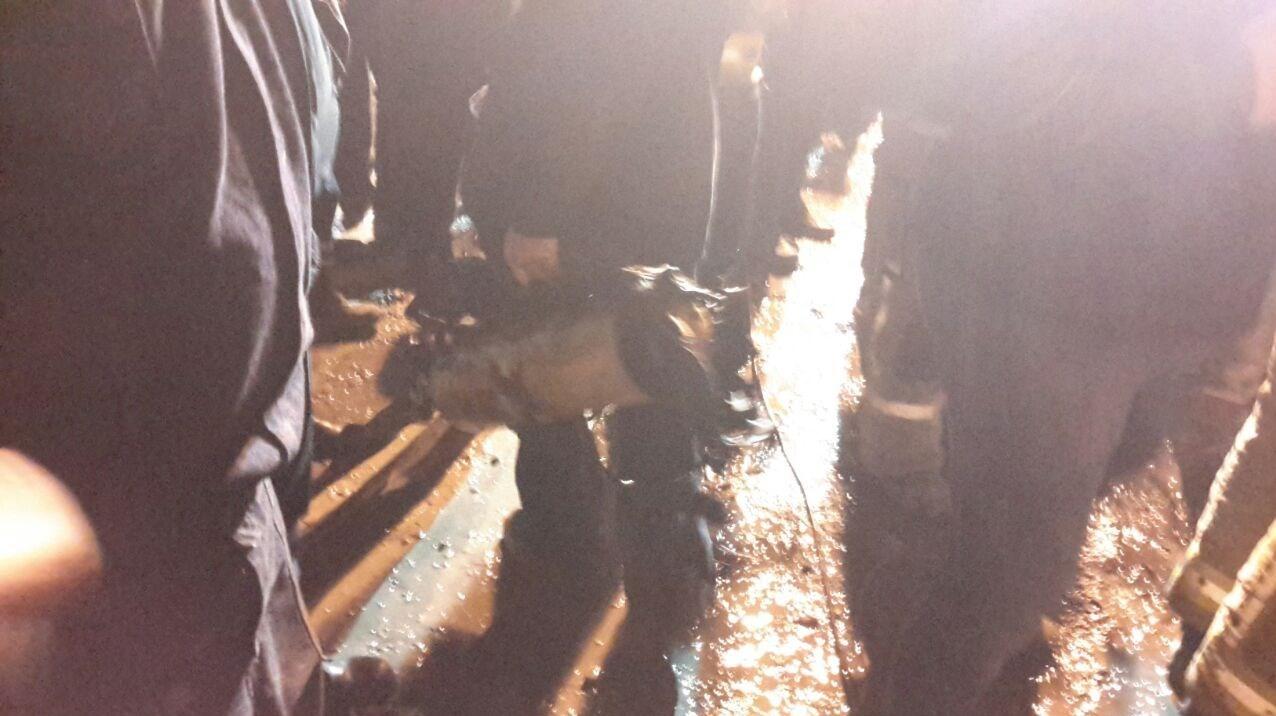 1395110122414510897522210 - پیدا شدن ۴ پیکر در حادثه ساختمان پلاسکو + عکس و جزئیات کشف اجساد در حادثه ساختمان پلاسکو
