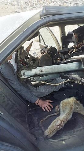 عکس تصادف دلخراش حوادث تهران تصادف پژو