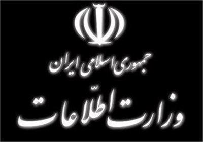 جزئیات پرونده مایکل وایت در ایران| وزارت اطلاعات: او به دلیل تشدید بیماری و دلایل انسانی آزاد شد
