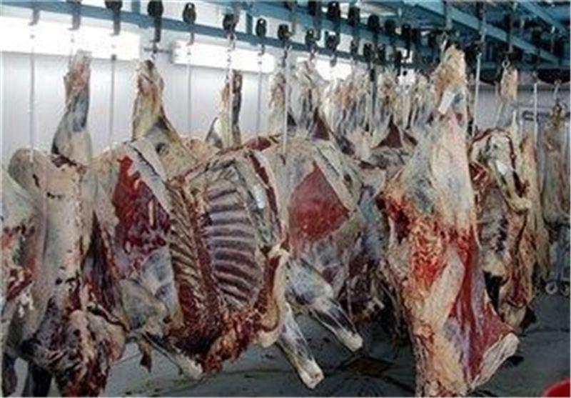 تولید بیش از 10 هزار تن گوشت قرمز و سفید در فومن