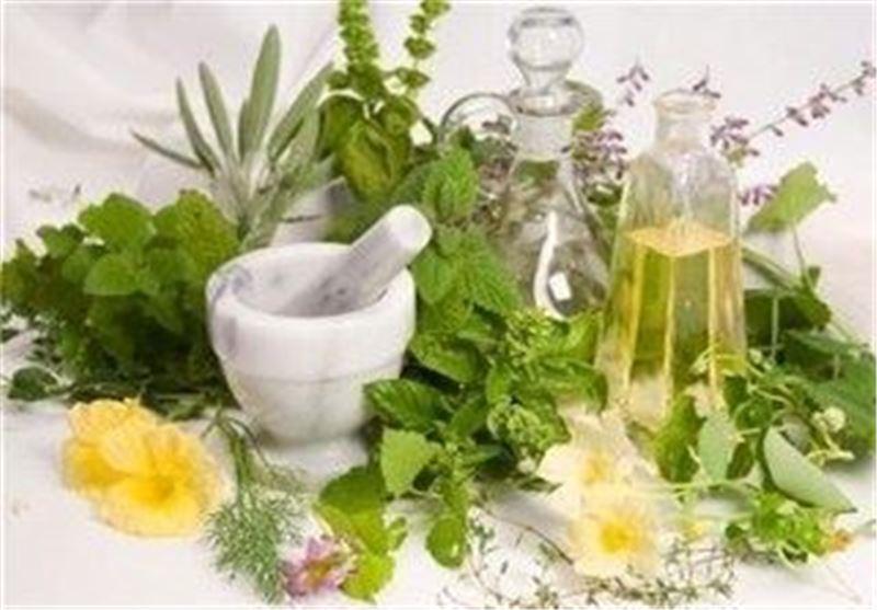 اردبیل|15 درصد گونه های گیاهی کشور در استان اردبیل وجود دارد