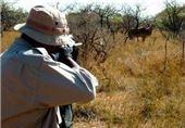 دستگیری یک قاچاقچی پرنده و یک شکارچی متخلف در سیستان و بلوچستان