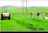 «روستا، محور توسعه»| یک چهارم اقتصاد ایران محصول روستاییها / چطور روستا را نابود کردیم؟