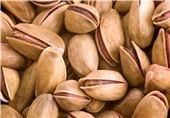 Iran, Largest Exporter of Pistachio to India