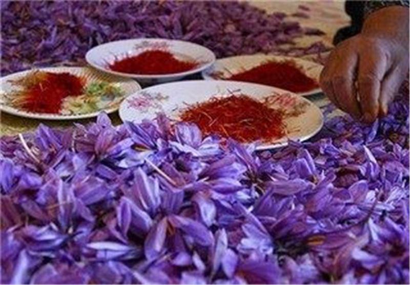 صادرات 139 تن زعفران ایرانی در سال 91