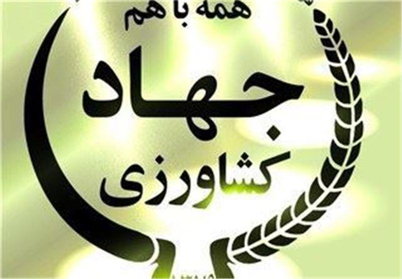 فهرست مجوزه هایی که توسط وزارت جهاد کشاورزی صادر می شود منتشر شد