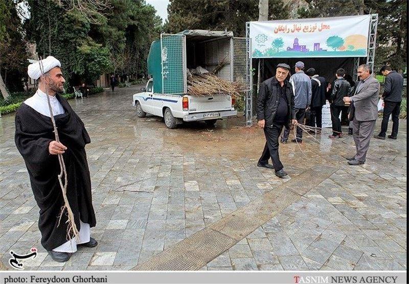 50 هزار اصله نهال در بین شهروندان استان سمنان توزیع شد