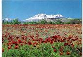 اردبیل| سبلان تنها اثر طبیعی ثبت ملی استان اردبیل است