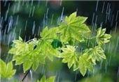 بارش باران در نطنز، تا 2 روز آینده ادامه دارد