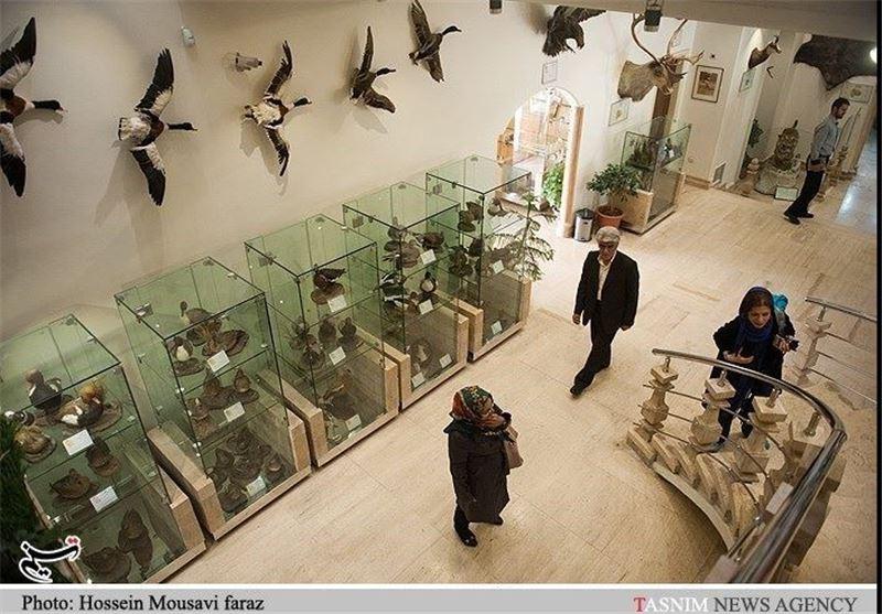 Iran Darabad Museum of Nature, Wildlife