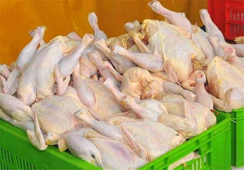 مرغ از سفره پر میکشد؛ذخایر تا 2 هفته دیگر دوام دارد