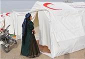 تامین خون کافی برای زلزله زدگان بوشهر تا اعزام 13 کامیونت دارو و کالاهای بهداشتی