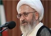 رئیس سازمان انرژی اتمی با آیت الله سبحانی دیدار کرد