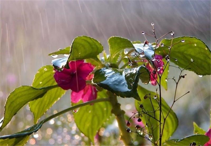 افزایش 30 درصدی بارش در همدان نسبت به سال گذشته