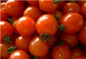 """آیا میوههایی که اندازه درشت یا ریز دارند، """"تراریخت"""" هستند؟"""