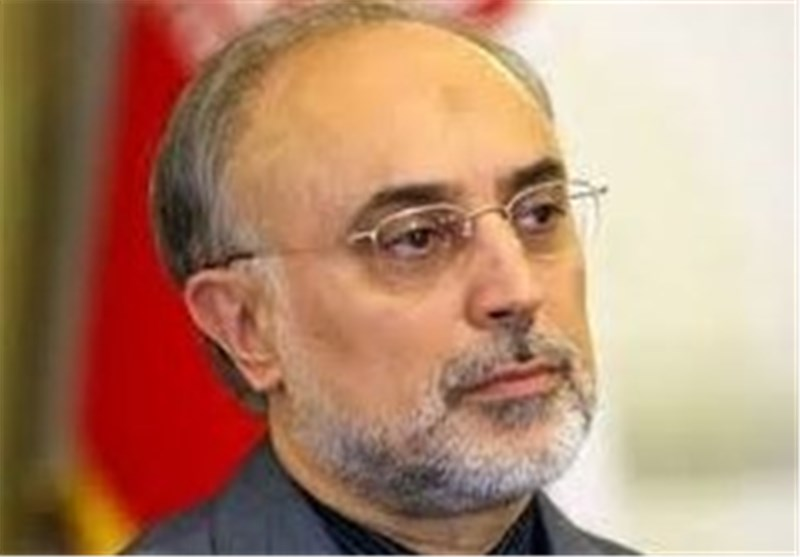 Salehi Appointed as Head of Atomic Energy Organization of Iran