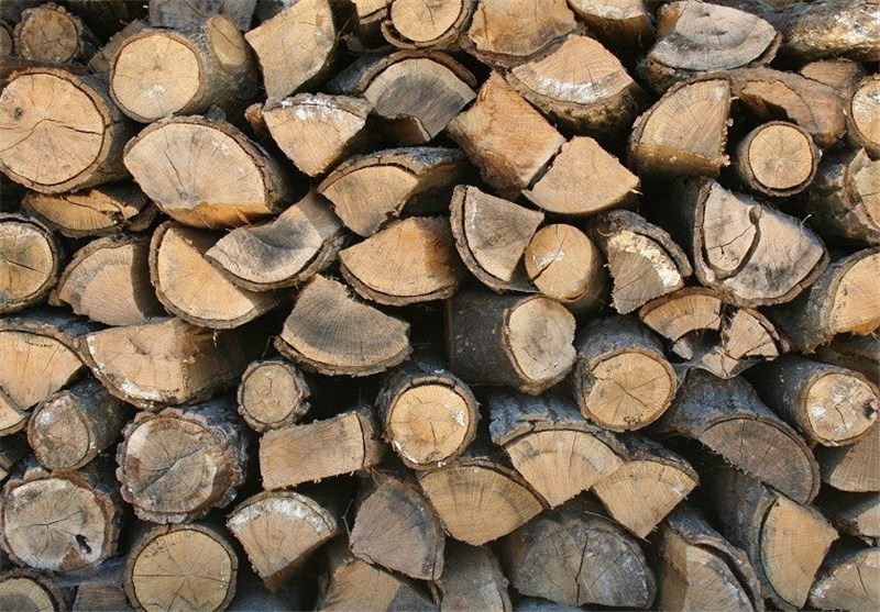 کشف 224 اصله چوب قاچاق در شهرستان شفت