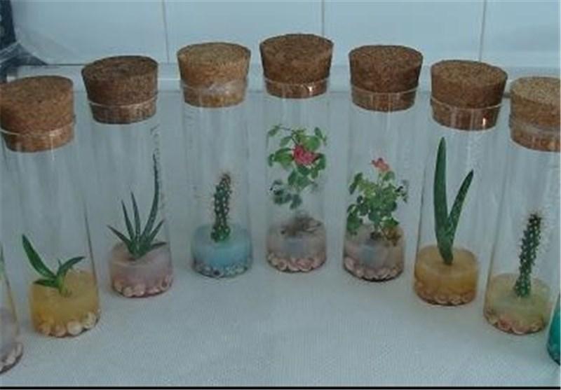 زیست فناوری