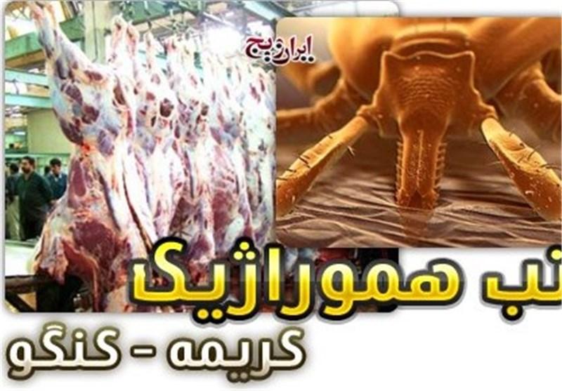 هشدار دامپزشکی گلستان درباره احتمال شیوع تب کنگو/ مردم از گوشتهای مورد تائید دامپزشکی استفاده کنند