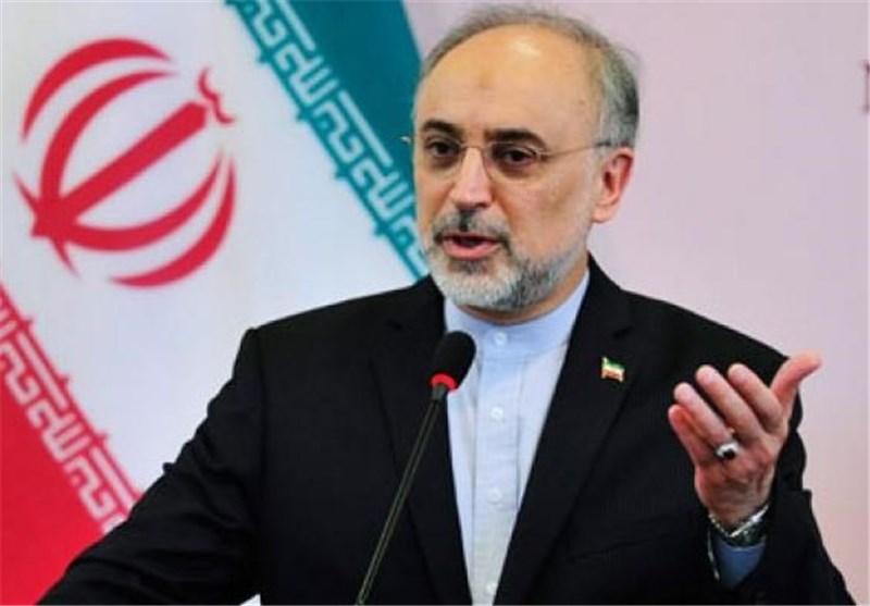 Salehi Renews Iran's Concern over Events in Egypt
