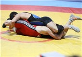 Iran's Wrestler Mohammadian Wins Gold Medal at Stepan Sargsyan Cup