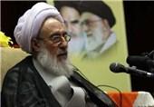 آیت الله شبستری: دستگیری تفنگداران آمریکا نشان داد که ایران با هر تجاوزی مقتدرانه برخورد میکند