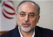 AEOI Chief Upbeat about Iran,G5+1 Nuclear Talks
