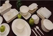 قرار دادن «نذری» در ظروف یک بار مصرف فومی شکل، خطرناک است