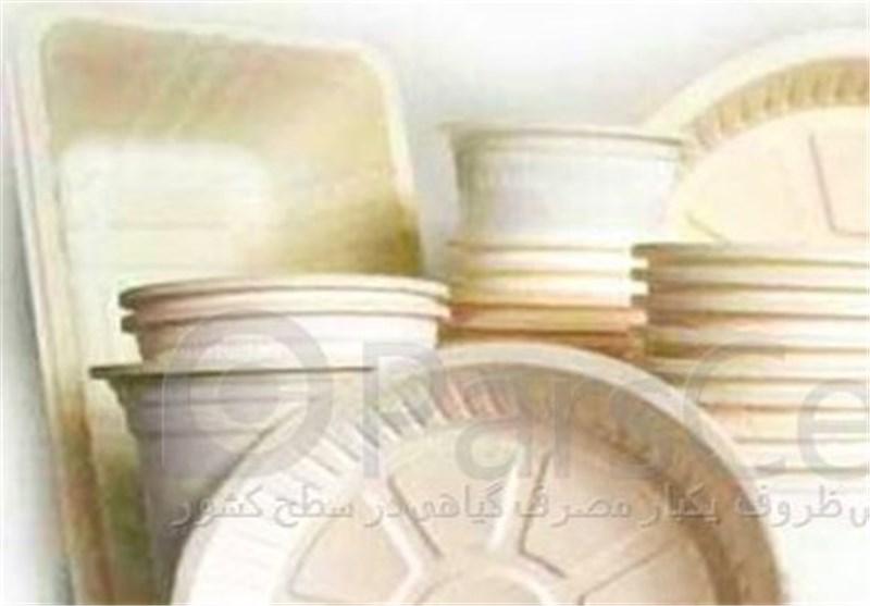 احتکار 600 تن مواداولیه ساخت ظروف یکبار مصرف در جنوب تهران