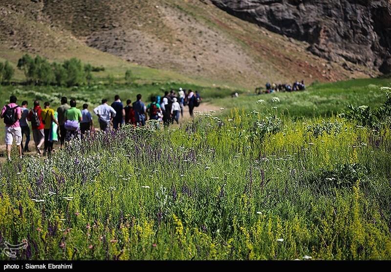 تنگه واشی» مکانی با جاذبههای گردشگری است که در حدود 15 کیلومتری شمال غربی شهرستان فیروزکوه قرار گرفته و با داشتن آب و هوای مناسب در تابستانها، میزبان جمعیت کثیری از مسافران و گردشگران است