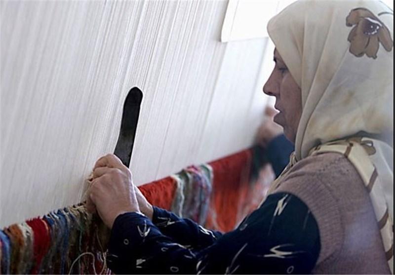 رئیس فراکسیون زنان مجلس: طرحهای مطرح شده در کمیسیون زنان باید سریع پیگیری شوند