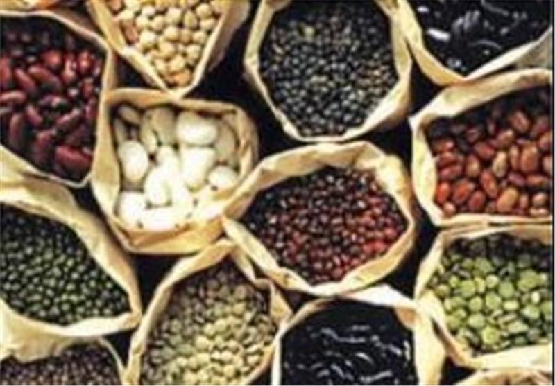 طرح تنظیم بازار محصولات کشاورزی در استان بوشهر اجرایی شد