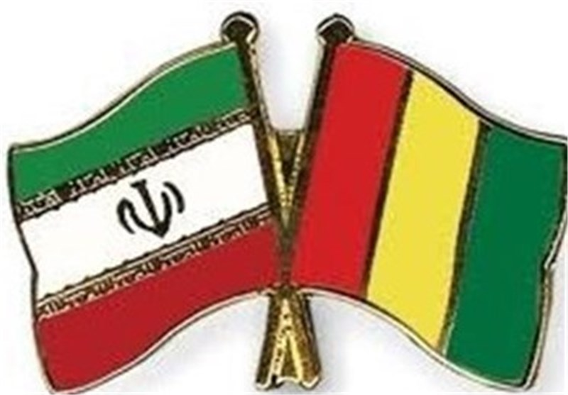 Iran, Guinea to Boost Cooperation in Women Affairs