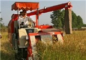 صدور 7 فقره جواز تاسیس صنایع کشاورزی در مازندران