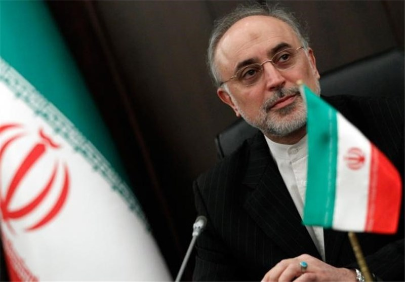 Salehi: Safety Tops Iran's N. Power Plant Program