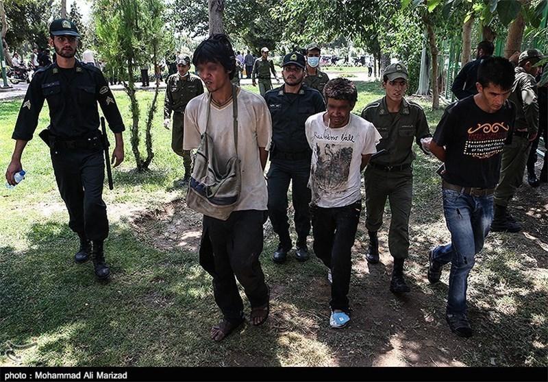 17 سارق معتاد در مراغه دستگیر شد