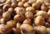 واردات غذای دام ایران از هند 2 برابر شد