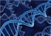 Affordable Genetic Diagnostic Technique for Target DNA Analysis Developed