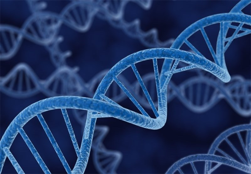 DNA Repair Helps Prevent Cancer