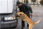 پلیس مبارزه با مواد مخدر