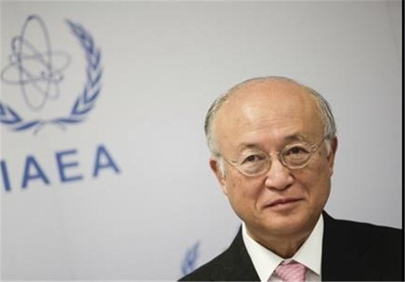 UN Nuclear Watchdog Chief Says Atomic Plants Never '100%' Safe