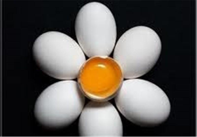 تولید 16000 تن تخم مرغ در یزد