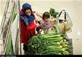 """میتوان ایران را به پایتخت """"کشاورزی ارگانیک"""" جهان تبدیل کرد/ تلاش جریان مافیایی برای ترویج """"تراریخته"""""""