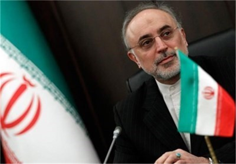 Salehi: Iran to Launch UO2 Production Lines Soon