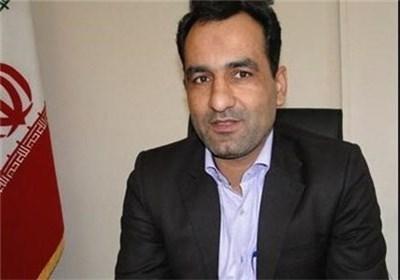 محمد فیروزی